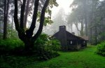 Cabin in the Mist, Whidbey Island