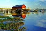 Coupeville Wharf Reflection, Whidbey Island