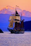 Hawaiian Chieftain under Mt. Baker