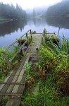 Honeymoon Lake, Whidbey Island