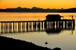 Penn Cove, Whidbey Island, Pier, Sunrise